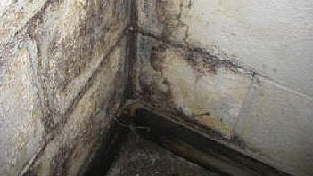 Moisture Problems - Rising water in basements